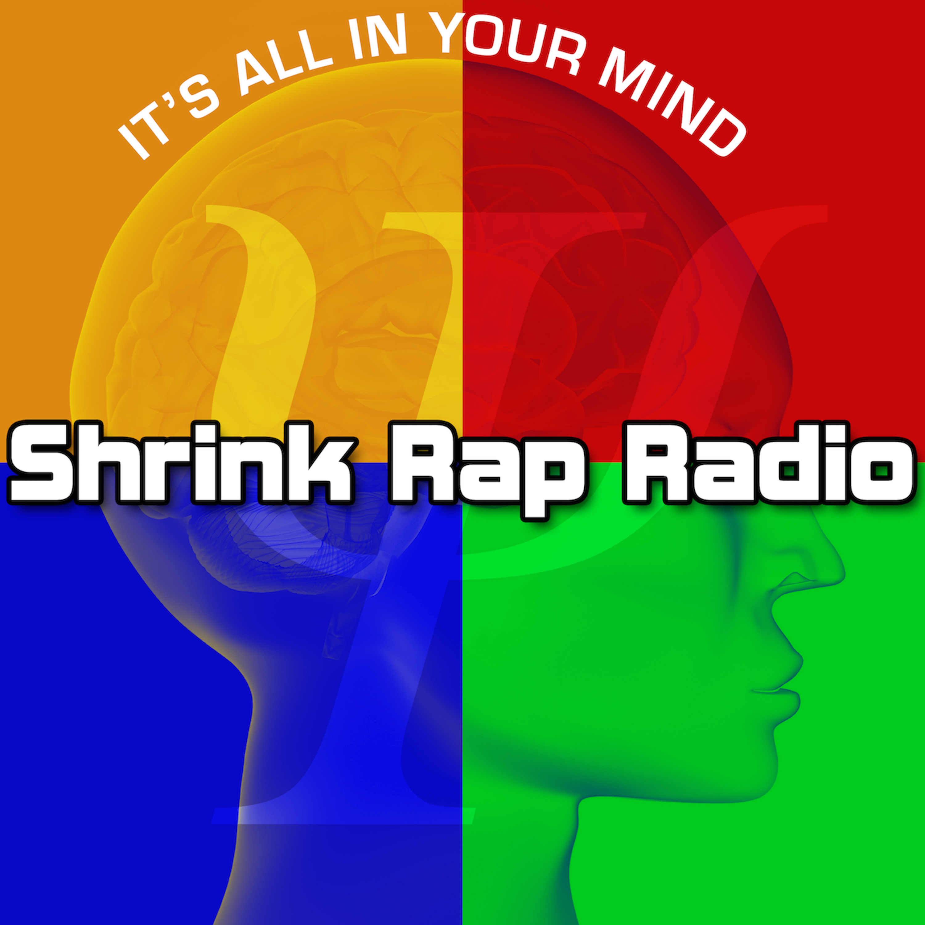 Shrink Rap Radio Psychology Interviews: Exploring brain, body, mind, spirit, intuition, leadership, research, psychotherapy and more!